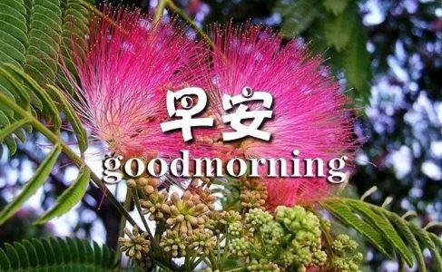 早安激励自己的励志话语