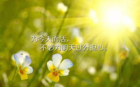 早安英文励志短句,非常经典!