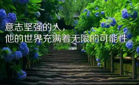 感悟人生的早安励志短句,句句充满正能量