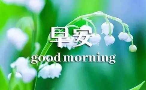 感悟人生的早安励志心语,句句精辟有哲理!