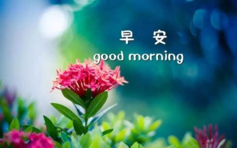 清晨暖心的早安祝福问候语