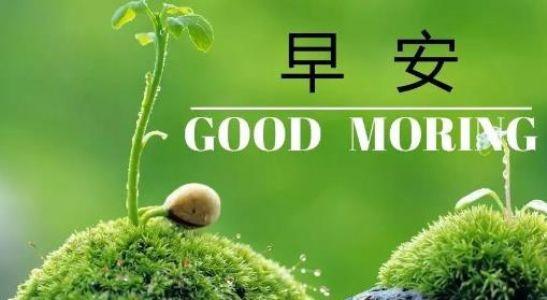 早安励志一句话,句句激励人心