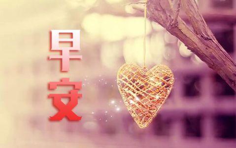送给情侣的早安心语,情人早安暖心短句子