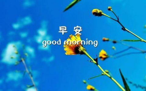 早安心情一句话十个字早安心语说说