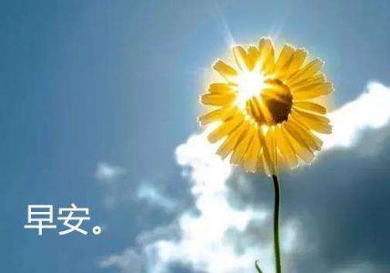 2020全新的早安句子,阳光励志正能量
