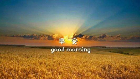 早晨让人开心的暖心话,早安心语最美一句话